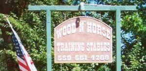 woodnhorseabout